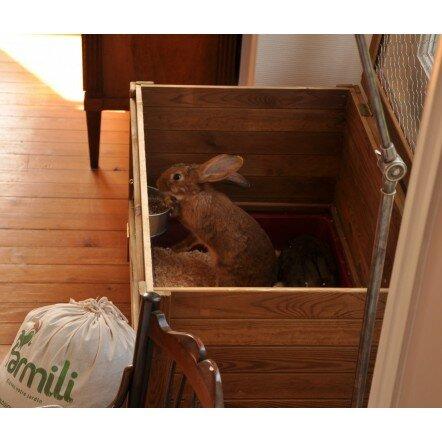 Cage à lapin Boudoir